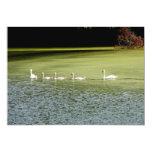 I love swans! 5x7 paper invitation card