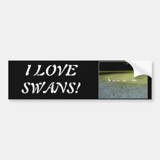 I love swans! bumper stickers