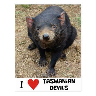 I love Tasmanian devils Postcard