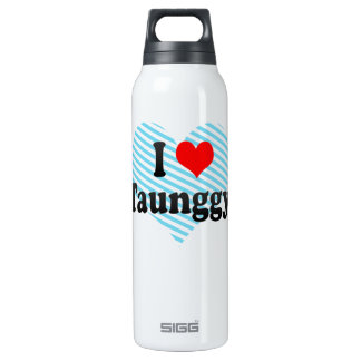 I Love Taunggyi, Myanmar 16 Oz Insulated SIGG Thermos Water Bottle