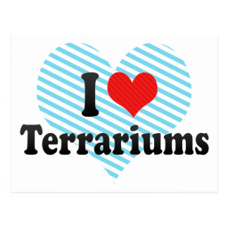 I Love Terrariums Postcard