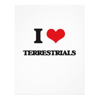 I love Terrestrials Flyer Design