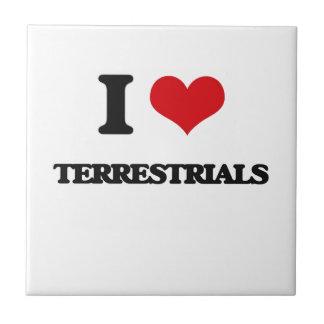 I love Terrestrials Small Square Tile