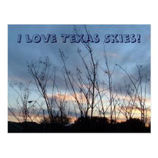 I love Texas Skies! Postcard