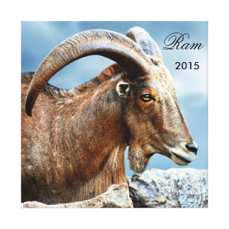 I love the Ram 2015 Canvas Print