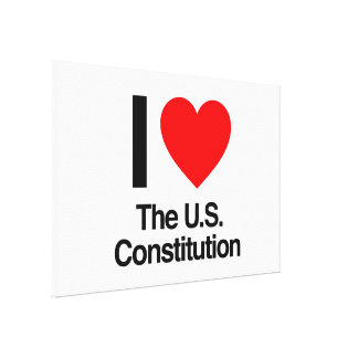 i love the u.s. constitution stretched canvas print