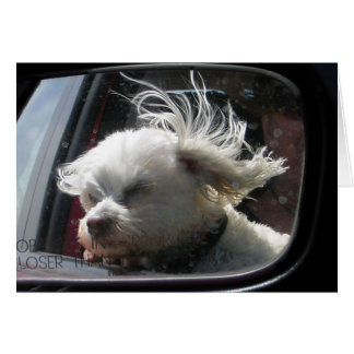 I love the wind and rain in my hair... card