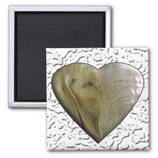 I Love the Zoo: Elephant Heart 2 Inch Square Magnet