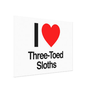 i love three-toed sloths stretched canvas prints
