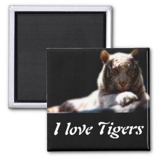 I Love Tigers Magnet