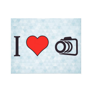 I Love To Take Pictures Canvas Print