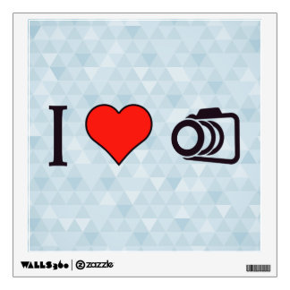 I Love To Take Pictures Wall Decal