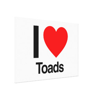 i love toads canvas print