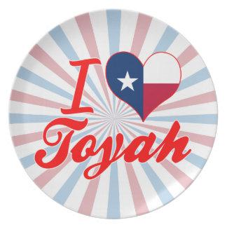 I Love Toyah, Texas Party Plates