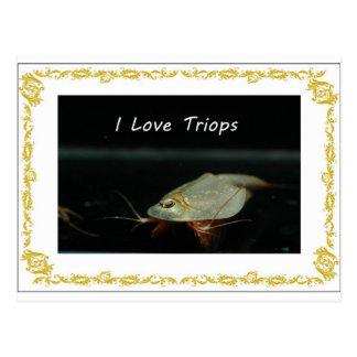 I love triops-2.jpg postcard