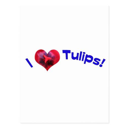 I love tulips blue postcard