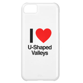 i love u-shaped valleys iPhone 5C case