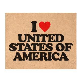 I LOVE UNITED STATES OF AMERICA QUEORK PHOTO PRINTS