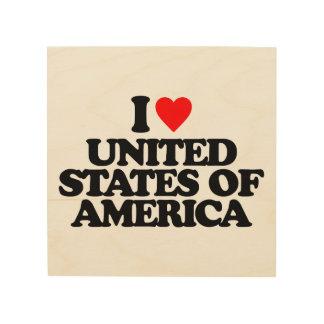 I LOVE UNITED STATES OF AMERICA WOOD CANVAS