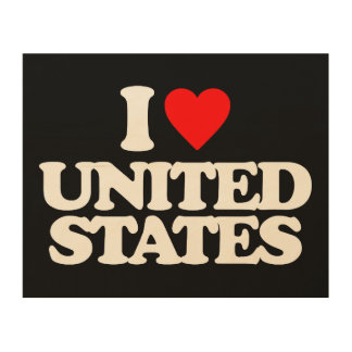 I LOVE UNITED STATES WOOD CANVAS