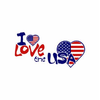 I Love USA American Heart Pin Photo Sculpture