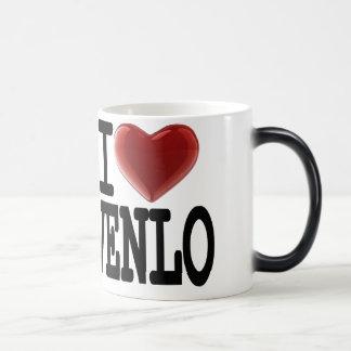 I Love VENLO Mug