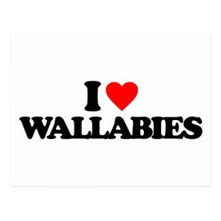 I LOVE WALLABIES POSTCARD
