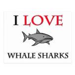I Love Whale Sharks Postcards