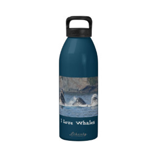 I Love Whales humpback whale water bottle