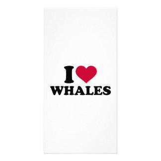 I love Whales Photo Card