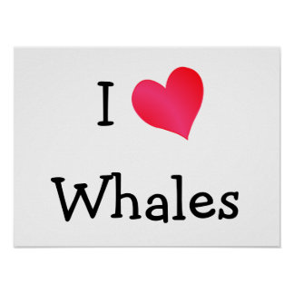 I Love Whales Poster