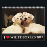 """I Love White Boxers 2017 Calendar<br><div class=""""desc"""">Get your I Love White Boxers 2017 Calendar! We searched far and wide for fantastic photos of white Boxers for this calendar, and after running a contest among boxer enthusiasts all over the world, chose the best of the best! This calendar represents our beloved white Boxer dogs, beautiful, charming and...</div>"""