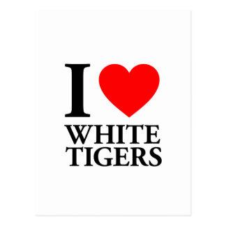 I Love White Tigers Postcard
