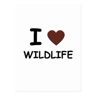I LOVE WILDLIFE POSTCARD