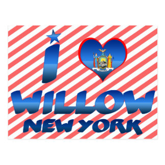 I love Willow, New York Postcard