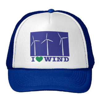 I Love Wind Trucker Hats