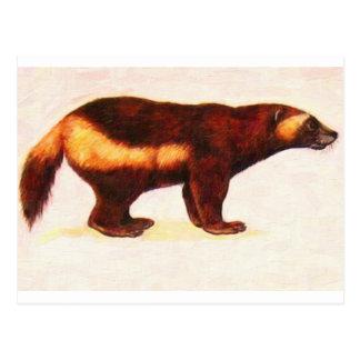 I Love Wolverine Postcard
