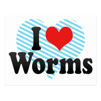I Love Worms Post Card