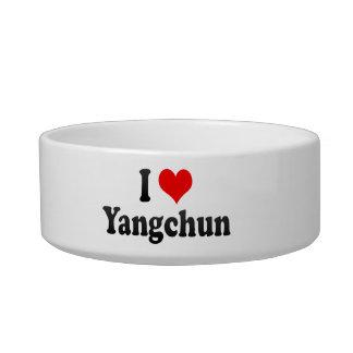 I Love Yangchun, China Cat Water Bowl