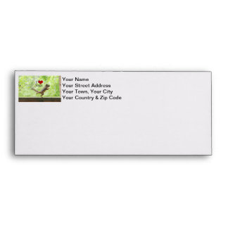 I Love Yoga Squirrel Envelopes