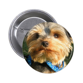 I Love Yorkies Pinback Button