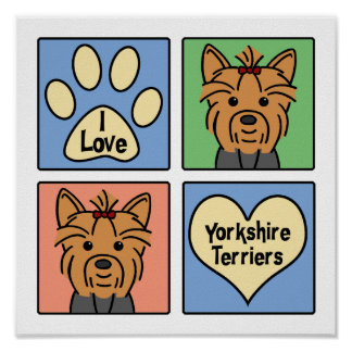 I Love Yorkshire Terriers Poster
