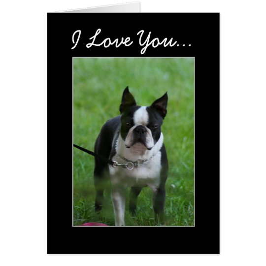 I Love you Boston Terrier greeting card