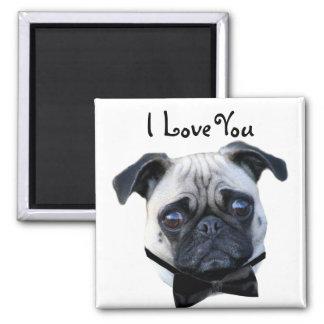 I Love You Boy Pug magnet