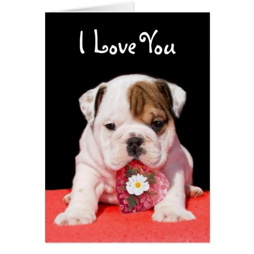 I Love You Bulldog greeting card