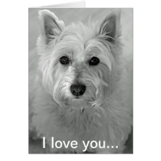 I Love You Card - Cute Westie Dog Card