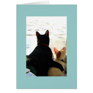 I love you Cats Greeting Card