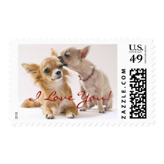 I Love You Chihuahua Stamps