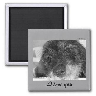 I love you - Dachshund magnet
