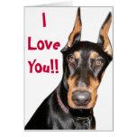 I Love You!! Doberman  Cards